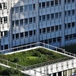 green rooftop laws: should we be next?